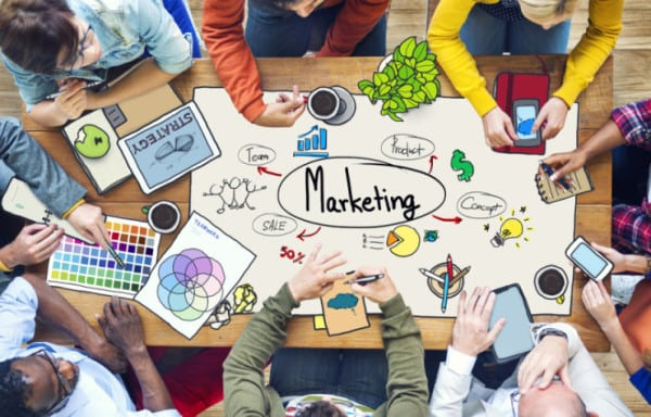 required-e-marketing-staff-with-expertise