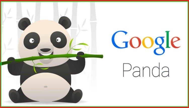 تحديث جوجل باندا