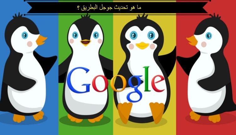 ما هو جوجل البطريق